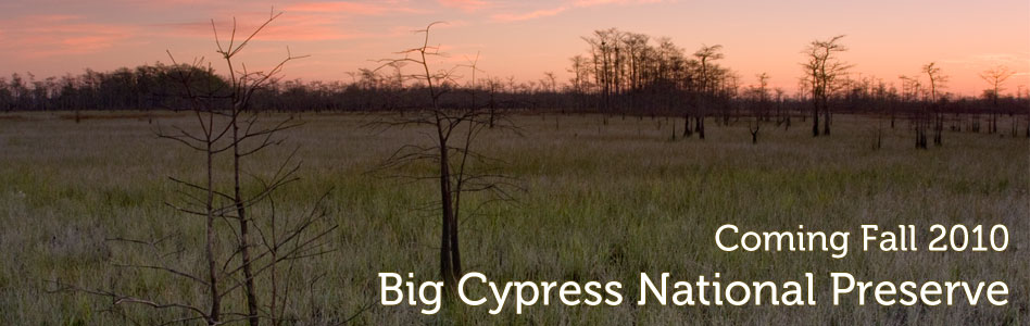 Big Cypress National Preserve - New Release